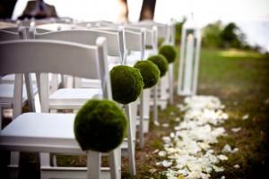 Backyard Wedding Ideas Budget Wise Tips