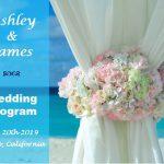 Free Wedding Program Examples