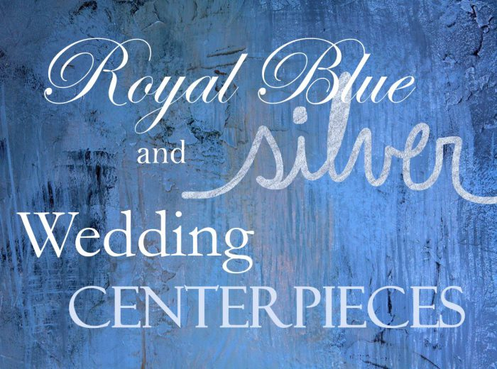 royal blue and silver wedding centerpiece ideas outside
