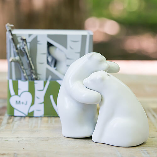 Porcelain salt and pepper shakers with gift box